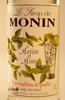 DEAMG-2384-MONIN_MINT